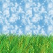 Stockfoto: Grass and sky