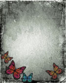 Grunge butterfly — Stock Photo
