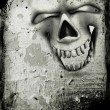 Grunge skull background — Stock Photo