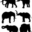 Stock Vector: Elephants