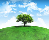 3D render of a tree on a curved grassy landscape — Stock Photo
