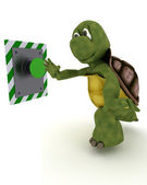 Tortoise pushing a button — Stock Photo
