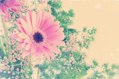 Floral background with vintage effect  — Stock Photo