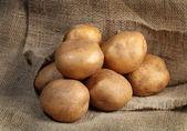Kartoffeln — Stockfoto