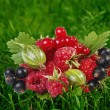 Fresh berries on a green background — Stock Photo