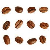 Kahve çekirdekleri. beyaz arka plan üzerinde izole — Stok fotoğraf
