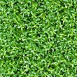 Artificial tiny green leaves texture — Stock Photo