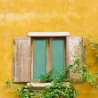 Royalty-Free Stock Photo: Vintage wood window