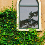 Vintage glass window — Stock Photo