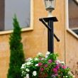 Foto Stock: Flower pots hanging on light pole