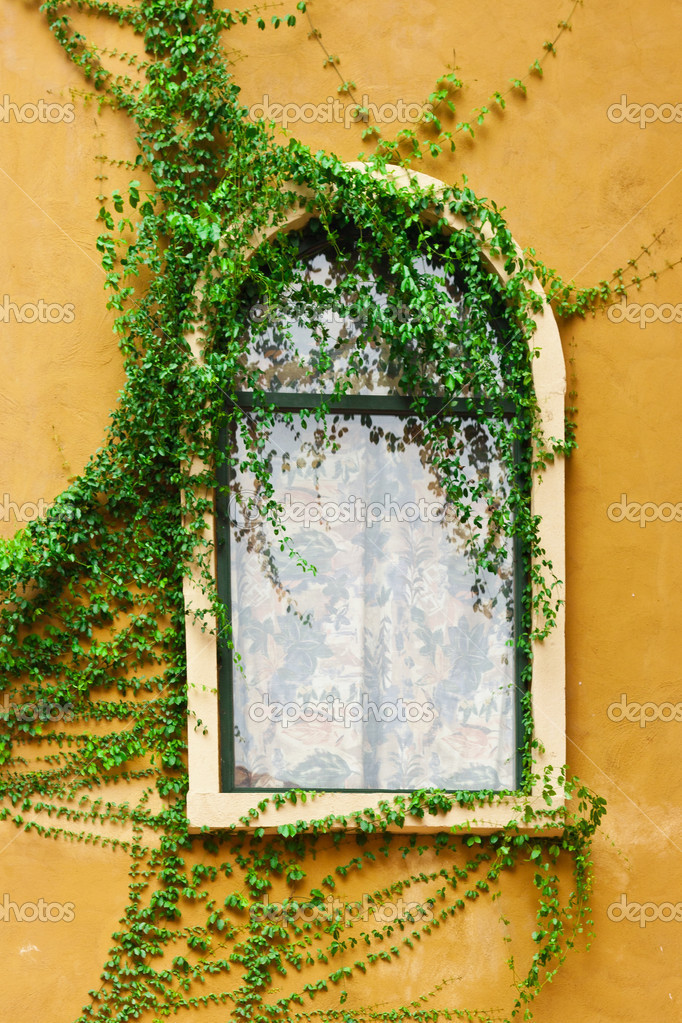 Vintage glass window on orange wall with climber — Stock Photo #15690943
