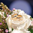 Wedding rings — Stock Photo #12639803