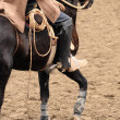 Rodeo in chile - Stock Photo