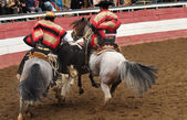 Rodeo in chile — Stock Photo