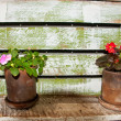 Flowers in a wooden box — Stock Photo