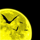 Bats against the moon — Stock Photo
