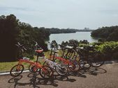 Cycling to Peirce Reservoir Singapore. — Stock Photo