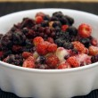 Stock Photo: Wild Berries served in a bowl