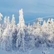 Ski lift among snow-covered trees - Stock Photo