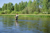 Fisherman catches of chub fly fishing in the Chusovaya river — Stock Photo