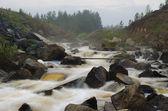 The mountain river — Stockfoto