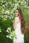 Portrait of beautiful  woman with apple tree flowers — Stock Photo