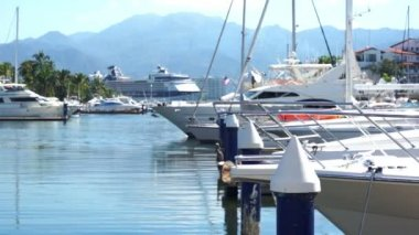 Boats Moored at the Dock Dolly — Stock Video