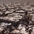 Stock Video: Environmental Cracked Dry Earth