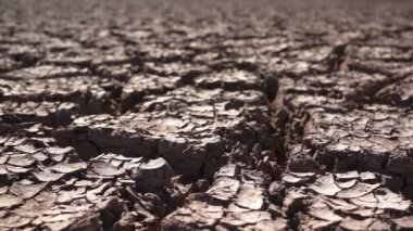 Environmental Cracked Dry Earth — Stock Video