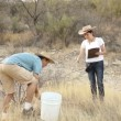 Earth Science Digging Location Instruction — Stock Video