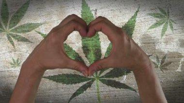 Hands Heart Symbol Marijuana Leaf — ストックビデオ