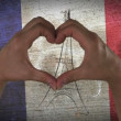 Hands Heart Symbol French Flag — Stock Video #46919695