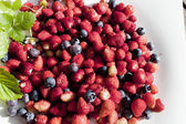 Wild strawberry and bilberry are on the white plate — Стоковое фото