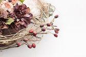 Kompozycja kwiat — Zdjęcie stockowe