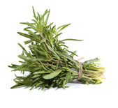 Rosemary bunch on the white background — Stock Photo