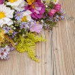 Wild Summer Flowers — Stock Photo