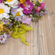 Wild Summer Flowers — Stock Photo #13121325