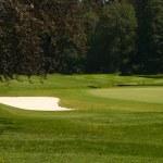 Golf Course — Stock Photo #6536447