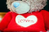 Teddy bear love you inscription on it. — Stock Photo