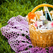 Basket with champagne — Stock Photo #20786229