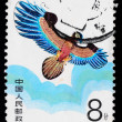 A stamp printed in China shows a kite of eagle figure  in the sky — Stock Photo