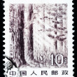 Stock Photo: Stamp printed in Chinshows immense forest in Northeast