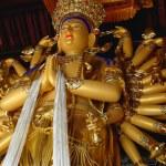 Thousand-hand Goddess — Stock Photo #13264517