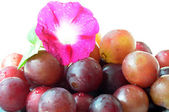 Grapes with a flower — Stock Photo