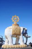 статуя белого слона — Стоковое фото