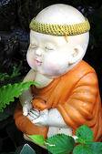 Lovely little monk — Stock Photo