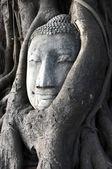 Cabeça de um arenito histórico buddha — Foto Stock