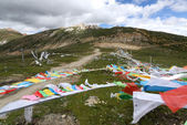 Landscape of Buddhist prayer flags — Photo