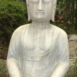 Ancient Buddha statue against green woods — Stock Photo