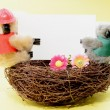 Two toy koala holding a blank white card on a nest — Stock Photo #46977339